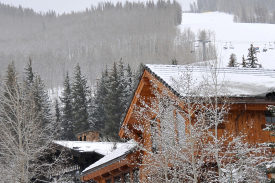 Durango lodging hotels vacation rentals ranches more for Cabins to stay in durango colorado
