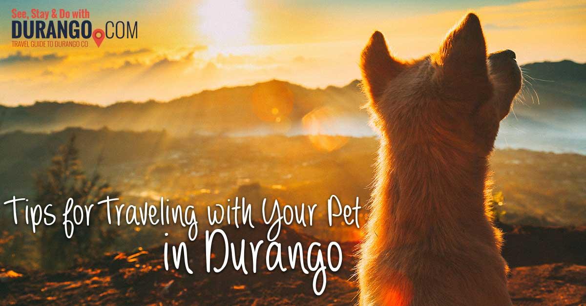 Durango Colorado Dog Friendly Hotels