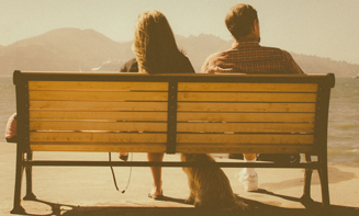 dog couple bench water_crop