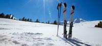 skiing-nav