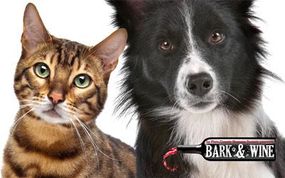 Bark & Wine Silent Auction Fundraiser