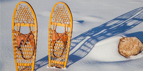 Colorado Snowshoeing